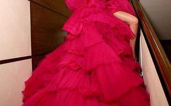 Украинская артистка Вера Брежнева удивила поклонников выбором платья
