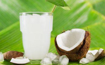 Ваше здоровье: кокосовая вода – полезный детокс-напиток