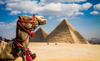 Едем отдыхать в Египет: что нужно знать о стране античных богов и фараонов