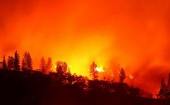 Голливудские знаменитости, которые пострадали от пожаров в Калифорнии