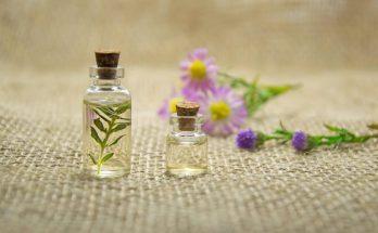 Эфирные масла, обладающие самым сильным антисептическим действием