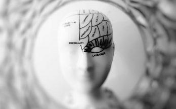 Исключите это из рациона питания: диетологи назвали продукты, разрушающие мозг