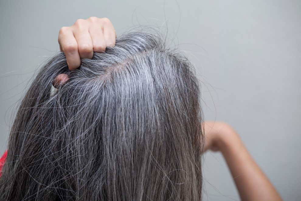 Дважды подумайте, прежде чем вырывать седые волосы, и вот почему