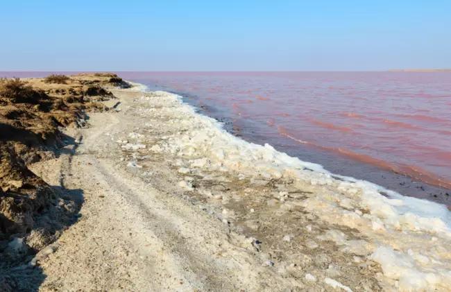 лечебные свойства дикого курорта и как добраться до Розового озера