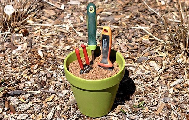 простые и дешевые хитрости, которые должен знать каждый огородник