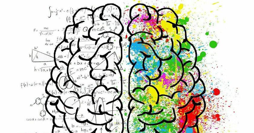 Чем заменить таблетки для улучшения работы мозга?